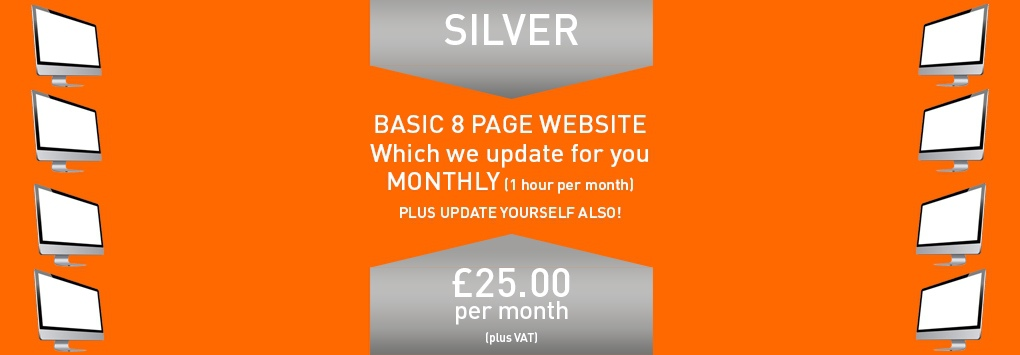 Silver Package - 25 Per Month