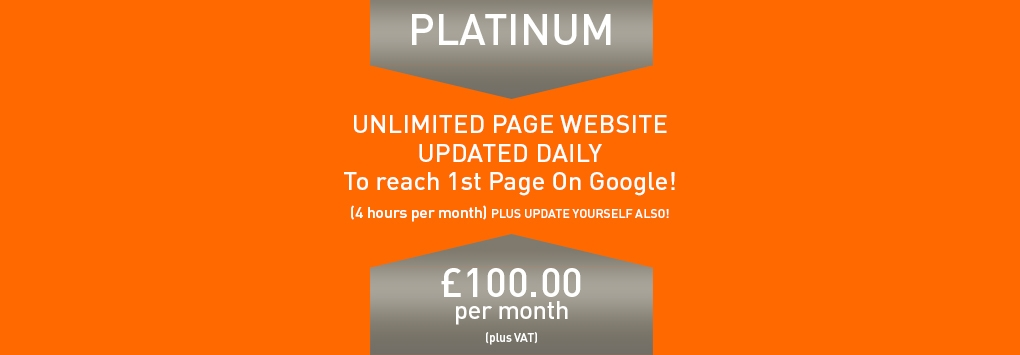 Platinum Package - 100 Per Month